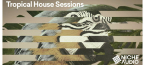 Niche samples sounds modern tropical house sessions 1000 x 512 new pluginboutique