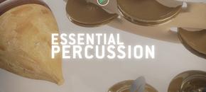 550x300 percussion v2 pluginboutique