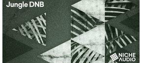 Niche samples sounds jungle dnb 1000 x 512 new pluginboutique