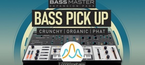 1000 x 512 lm bassmaster bass pick up pluginboutique